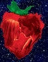 Across the Universe Music