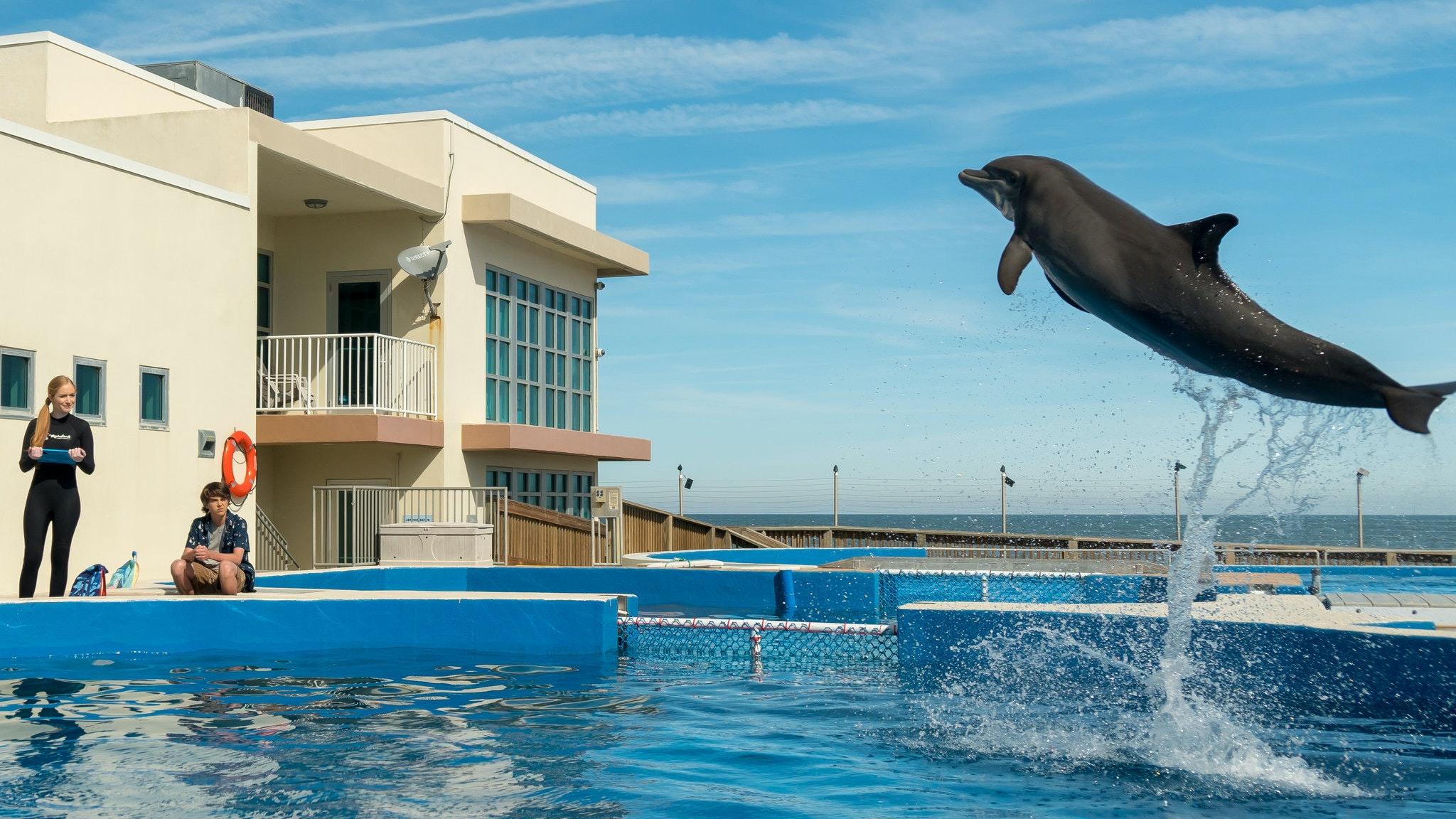 Bernie the Dolphin Soundtrack