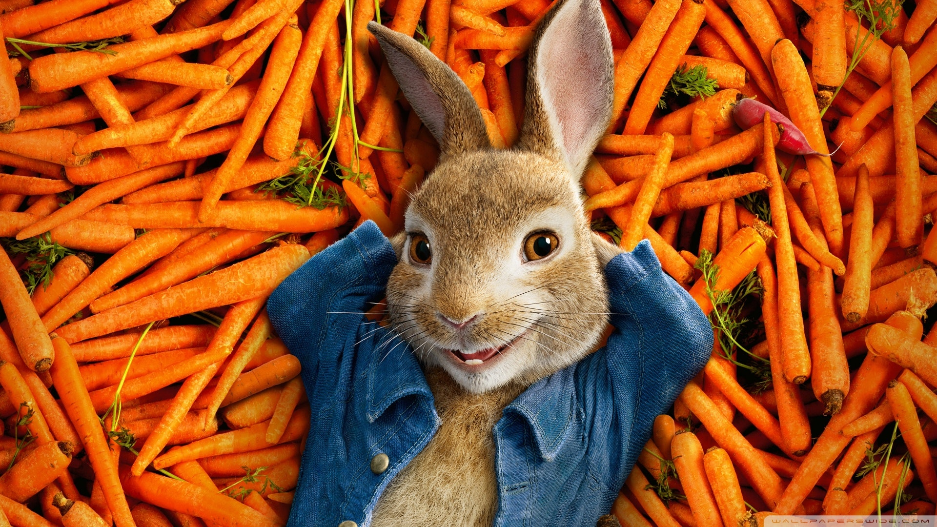 Peter Rabbit Soundtrack