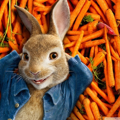 Peter Rabbit Soundtrack Music - Complete Song List | Tunefind
